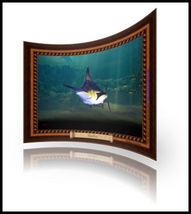 Marlin dans la mer